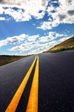 Nothin' in the middle of the road...</p>                                <div class=